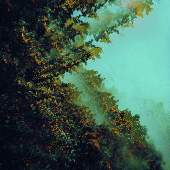 Polymoon Caterpillars of Creation (coloured) LP 2021