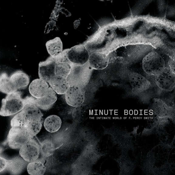 Tindersticks with Thomas Belhom and Christine Ott - Minute Bodies The Intimate World Of F. Percy Smith LP 0
