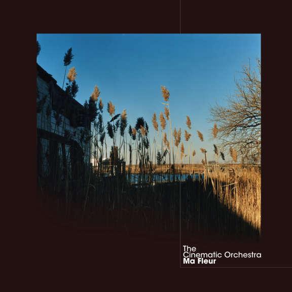 Cinematic Orchestra Ma Fleur (coloured) LP 2021