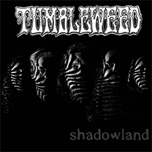 Shadowland (single), Tumbleweed