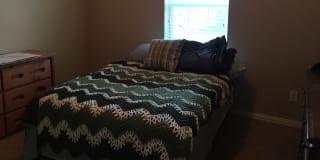 Photo of sforst's room