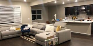 Photo of Niharika's room