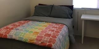 Photo of Para Patra's room