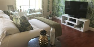Photo of Ivory's room