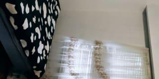Photo of Rokhsareh's room