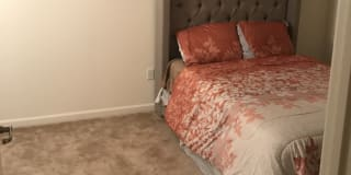 Photo of Renee's room
