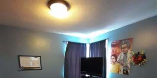 Photo of Kaytee's room