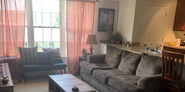Arlington Va Rooms For Rent Roomiescom