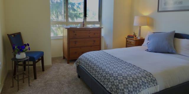 Photo of Daniella's room