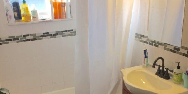 Surprising Coolidge Corner Brookline Ma Rooms For Rent Roomies Com Download Free Architecture Designs Embacsunscenecom