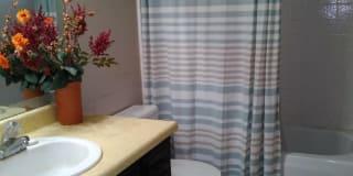Photo of Sylvia's room