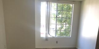 Photo of Carolina's room