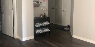Photo of Lizzie's room