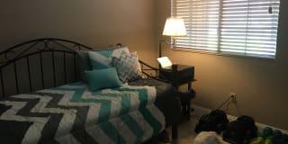 Photo of Nadya's room