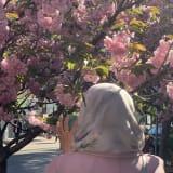 Photo of Hirah