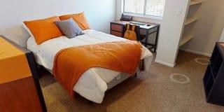 Photo of Laila's room