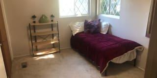 Photo of Trenton's room