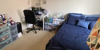 Photo of Shannon's room