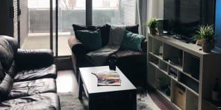 Photo of Daniel Edelstein's room