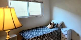 Photo of Moonmoon's room