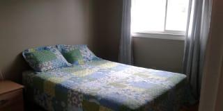 Photo of StaceyAnn's room