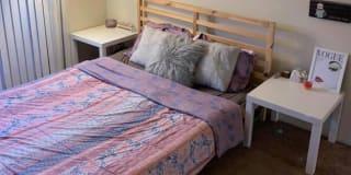 Photo of Any's room