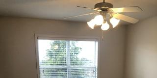 Photo of Hayden's room