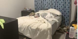 Photo of Kya's room