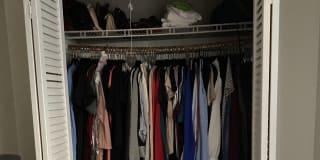 Photo of Gardenia's room