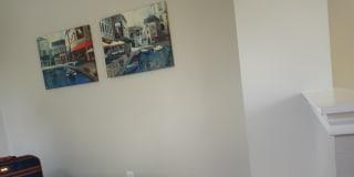 Photo of Harley's room