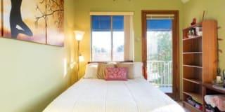 Photo of Mysterri's room