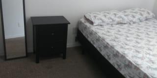 Photo of Maru's room