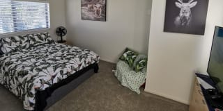 Photo of Shehani Fernando's room