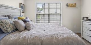 Photo of Shareese's room