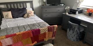 Photo of Sydney's room