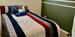 Photo of Dexter's room
