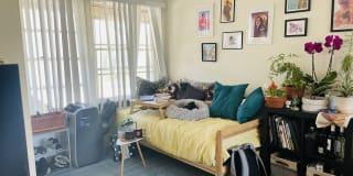 Photo of Skye's room