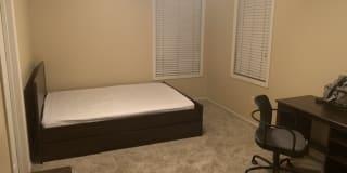 Photo of Alexi's room