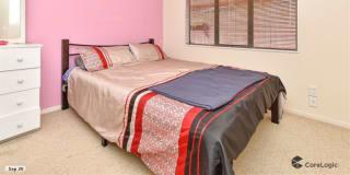 Photo of Frisha's room
