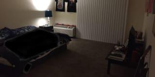 Photo of Alyda's room