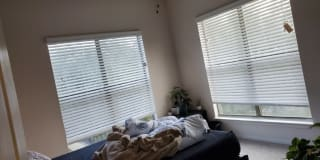 Photo of vivek's room