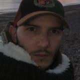 Photo of quirico