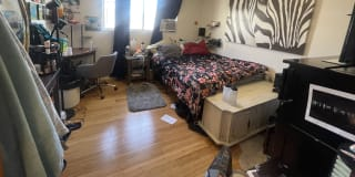Photo of Louisa Whitaker's room