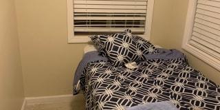 Photo of Love's room