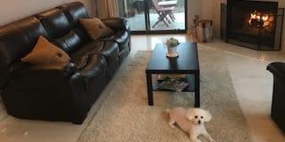 Photo of kampongkowboyllc (Owner)'s room