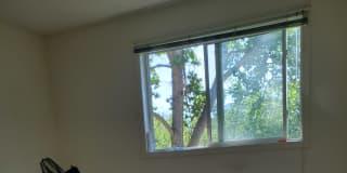 Photo of Sakshi Gupta's room