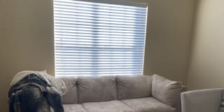 College Station Tx Rooms For Rent Roomies Com