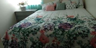 Photo of Rose Castro's room