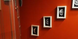 Photo of Amie's room