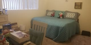 Photo of Cassidy's room
